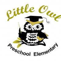 Little Owl School
